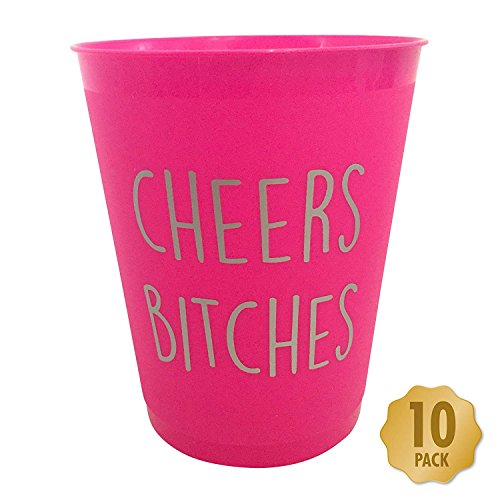 Cheers Bitches Bachelorette Party, Girls Night Out Drinking Cups - Pack of 10 Hot Pink & Silver