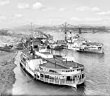 Cincinnati Historic Black & White Photo, Steamboats on the Ohio River, c1904