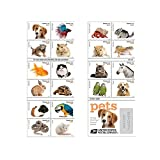 20 Forever USPS stamps Pets celebrate animals in our lives that bring joy companionship and love 1 sheet of 20 stamps
