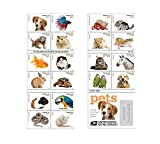 Toys : 20 Forever USPS stamps Pets celebrate animals in our lives that bring joy companionship and love 1 sheet of 20 stamps
