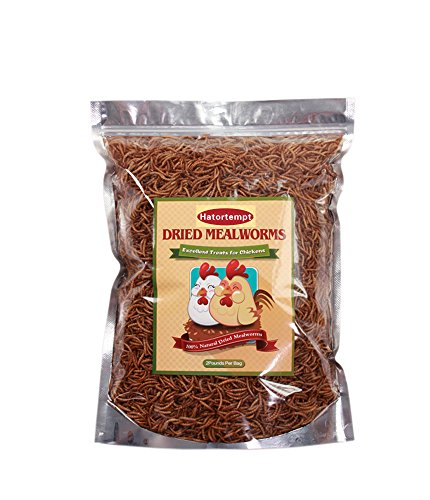 2-LB-Dried-mealworms-for-Birds-Chicken-Food-Duck-and-other-poultrys