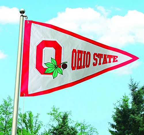 (The Party Animal NCAA Ohio State Buckeyes Giant Pennant)