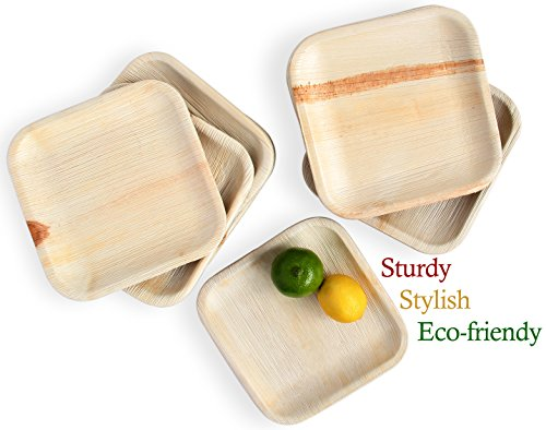Leafily Palm Leaf Plates - 8 inch Square - Heavy Duty - Elegant - 100% Compostable - Better than Bamboo or Wood - Disposable - Biodegradable - Premium Party Plates - USDA Certified - 22 Count