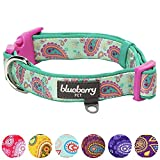Blueberry Pet 7 Patterns Soft & Comfy Paisley Flower Print Neoprene Padded Dog Collar, Emerald Green, Small, Neck 12''-16'', Adjustable Collars for Dogs