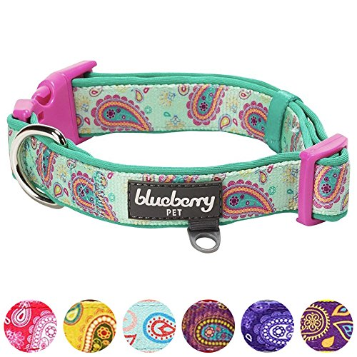 "Blueberry Pet 7 Patterns Soft & Comfy Paisley Flower Print Neoprene Padded Dog Collar, Emerald Green, Medium, Neck 14.5""-20"", Adjustable Collars for Dogs"