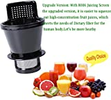 Podoy 8006 Juicing Screen Compatible with Omega