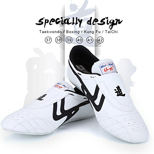 Taekwondo Shoes Martial Arts Sneaker Boxing Karate Kung Fu Tai Chi Shoes Black Stripes Sneakers Lightweight Shoes for Men Women (41)