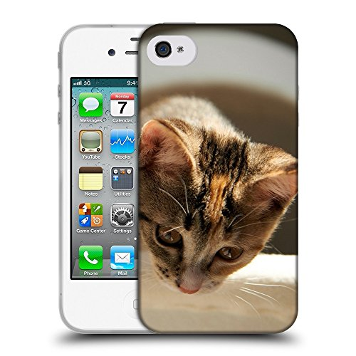 Just Phone Cases Coque de Protection TPU Silicone Case pour // V00004315 chaton domestique regardant // Apple iPhone 4 4S 4G