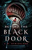 img - for Beyond the Black Door book / textbook / text book