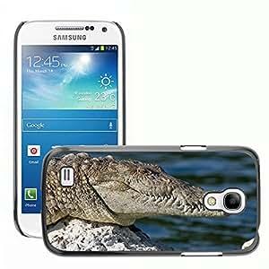 Super Stella Slim PC Hard Case Cover Skin Armor Shell Protection // M00144459 Crocodile Wild Animal Amphibian Shy // Samsung Galaxy S4 Mini i9190