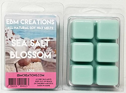 Sea Salt Blossom - Scented All Natural Soy Wax Melts - 6 Cube Clamshell 3.2oz Highly Scented! ()