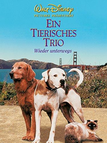 Ein tierisches Trio - Wieder unterwegs Film