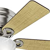 Hunter Indoor Low Profile Ceiling Fan with light
