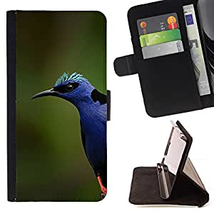 - Queen Pattern FOR LG G2 D800 /La identificaci????n del cr????dito ranuras para tarjetas tir????n de la caja Cartera de cuero cubie - blue bird colorful nature spring summer -