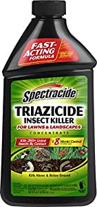 Spectracide 95829 Triazicide Once and Done! Insect Killer, 32-Ounce Concentrate, Case Pack  of 6