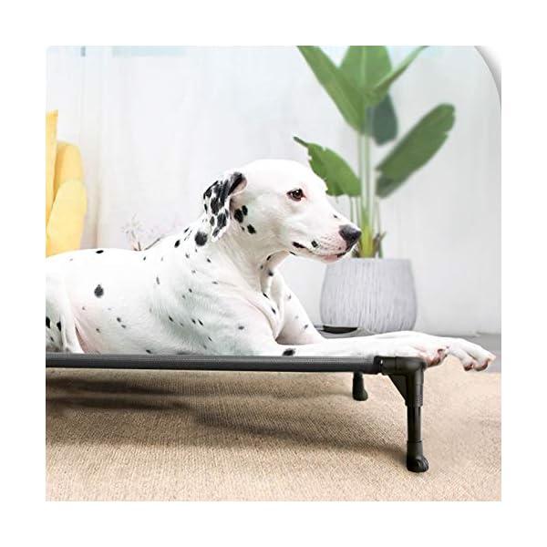 51FqcdihchL Veehoo Kühl Erhöhte Hundebett, Hundeliege Outdoor für Klein, Mittelgroße, Grosse Hunde, aus Waschbar & Dauerhaft…