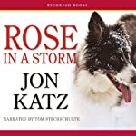 Rose in a Storm | Jon Katz