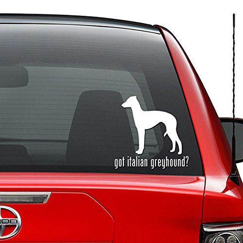 - Got Italian Greyhound Dog Pet Vinyl Decal Sticker Car Truck Vehicle Bumper Window Wall Decor Helmet Motorcycle and More - (Size 5 inch / 13 cm Wide) / (Color Gloss White)