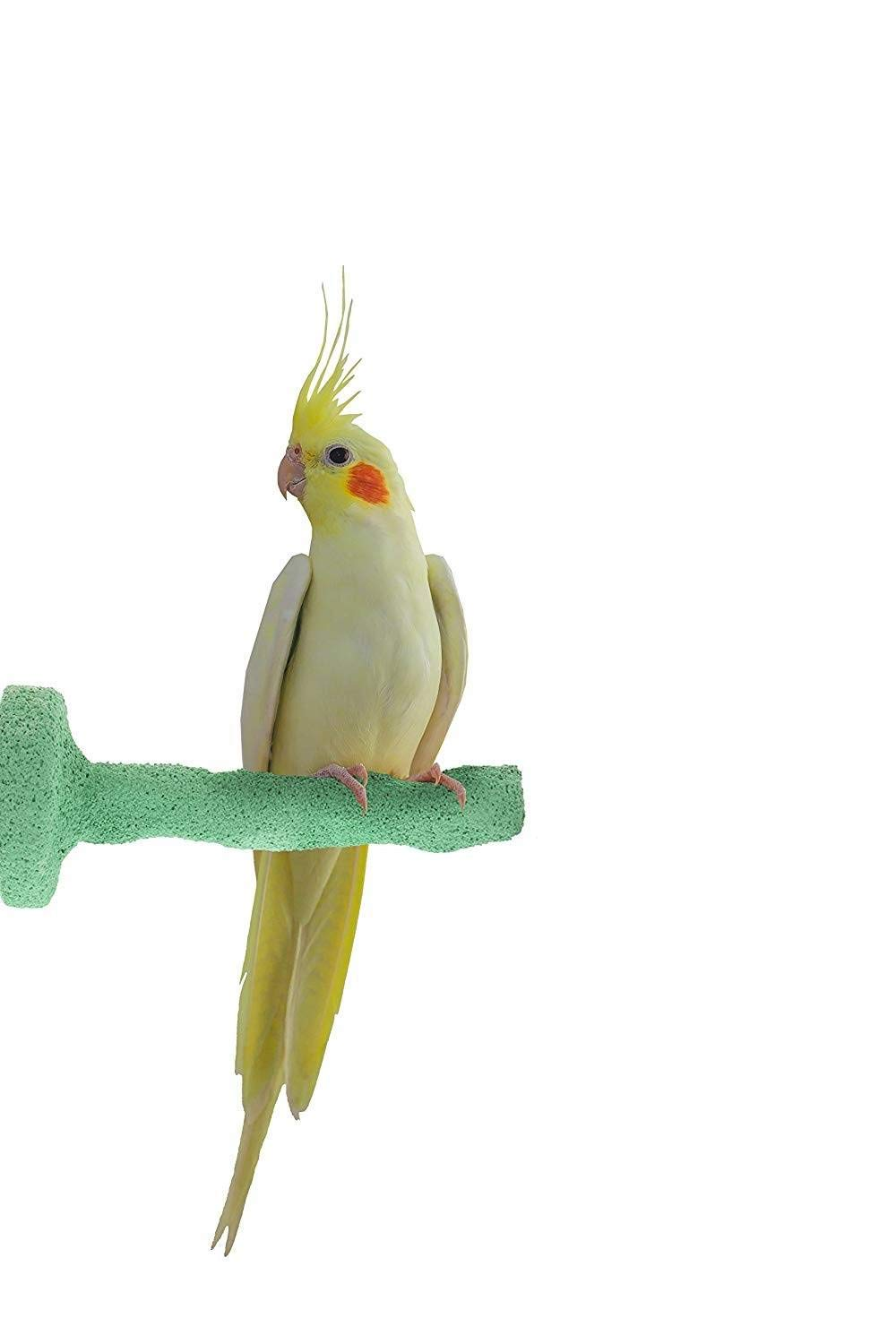 Green Small Green Small Sweet Feet and Beak Thermal-Lite Natural Patented Perch, Small Green- Perfect for Keeping Your Bird's Feet and Beaks Healthy