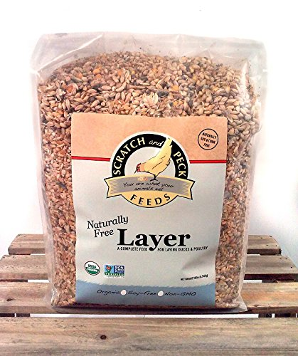 Supplement Organic Layer Feed Herbs