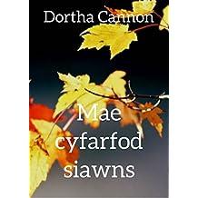 Mae cyfarfod siawns (Welsh Edition)