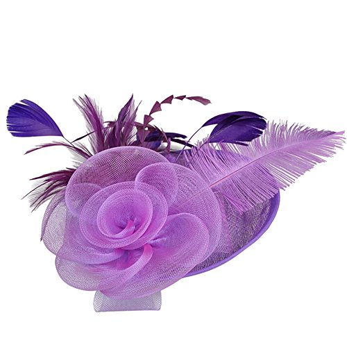 QueenMM Jewelry Fascinators Hat for Women Tea Party Headband Kentucky Derby Wedding Cocktail Flower Mesh Feathers Hair Clip Purple