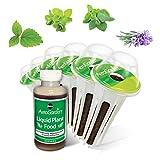 Miracle-Gro AeroGarden Fresh Tea Seed Pod Kit (6-Pod)