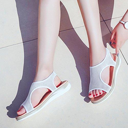 Plage Couleur Romain Sandales Respirant Unie Mode Été Ajouré Plat Orteil Bovake Blanc Femme Ouvert Chaussures IFw7qxA