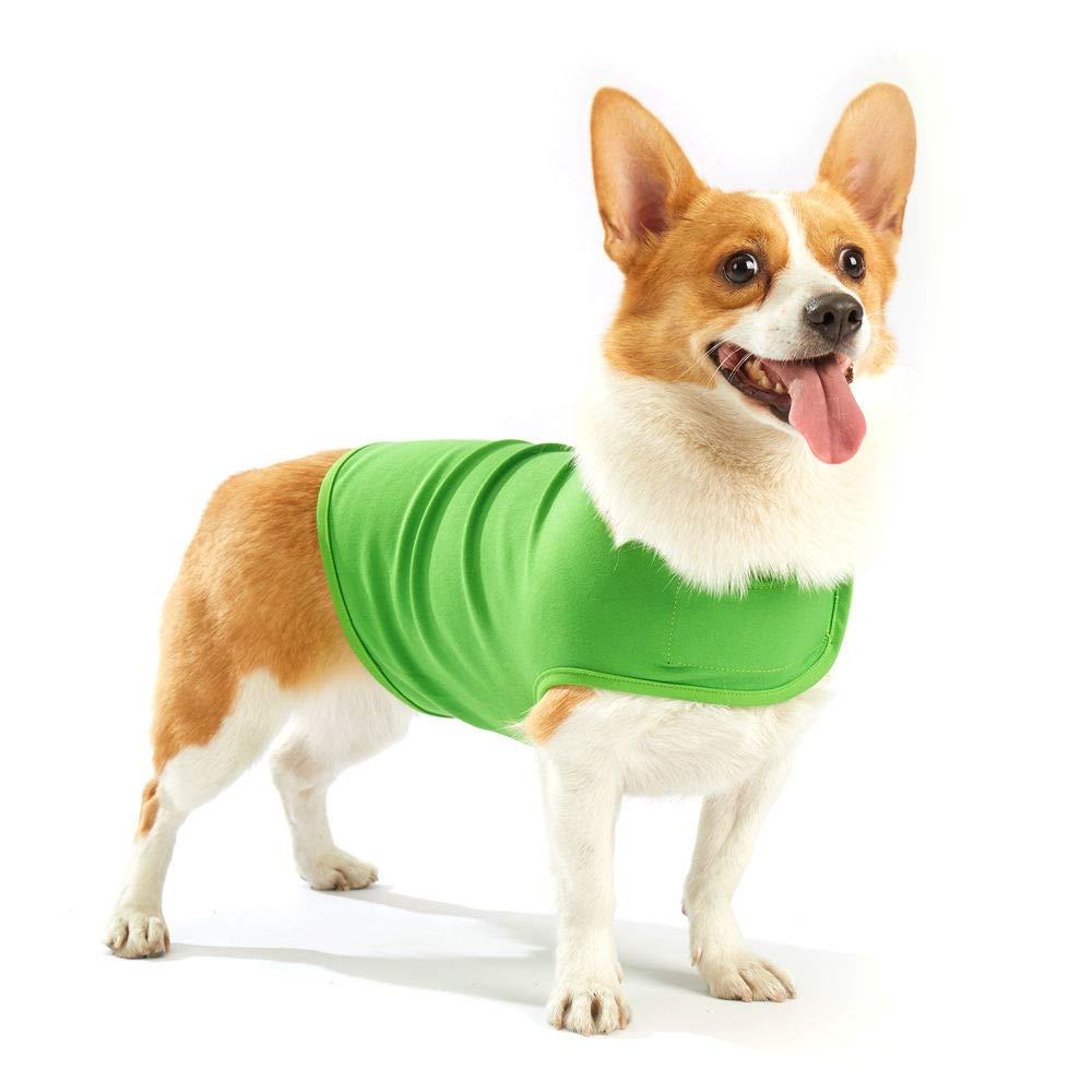 Amazon.com: Furubaby - Chaqueta para perro con capucha de ...