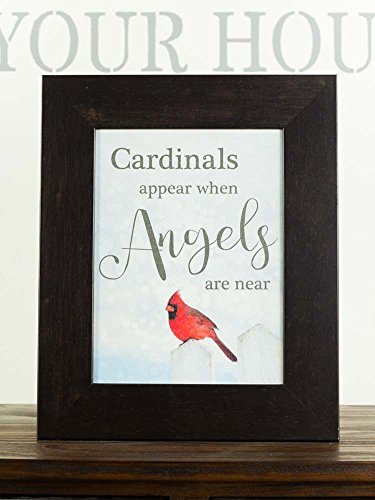 Cardinals Appear When Angels Are Near Sympathy Red Cardin...