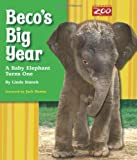img - for Beco's Big Year: A Baby Elephant Turns One book / textbook / text book