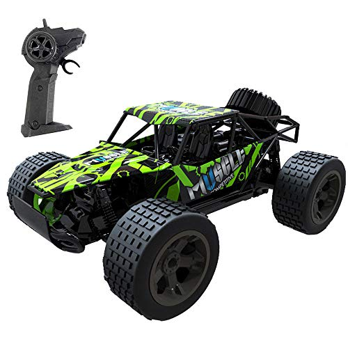 - Ama-store 1:20 Scale 2WD RTR Rock Crawler Electric RC Car with 2.4GHz Radio Remote Control High Speed RC Buggy for On-Road and Off-Road Racing Rock Crawling, Green