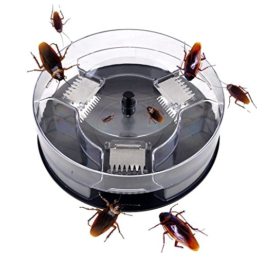 [ZYK.WH Cockroach Trap -- -- Security Environmental Protection, Reusable, Quickly Captured] (Cockroach Costumes)
