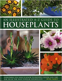 illustrated a z guide to houseplants everything you need to know to identify choose and care for 350 of the most popular houseplants