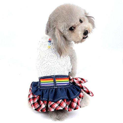 - SELMAI Dog Costumes Small Pet Dress Doggies Apparel Outfits Princess Denim Tutu Skirt for Party Onesies Cat Puppies Jumpsuit Hollow Lace Floral Vest Shirt Girls Sundress for Spring Summer Autumn XL