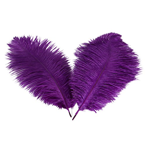 Wionya 20pcs Ostrich Feather Craft 10-12inch(25-30) Plume for Wedding Centerpieces Home -