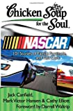 img - for Chicken Soup for the Soul: Nascar: 101 Stories of Family, Fortitude, and Fast Cars book / textbook / text book