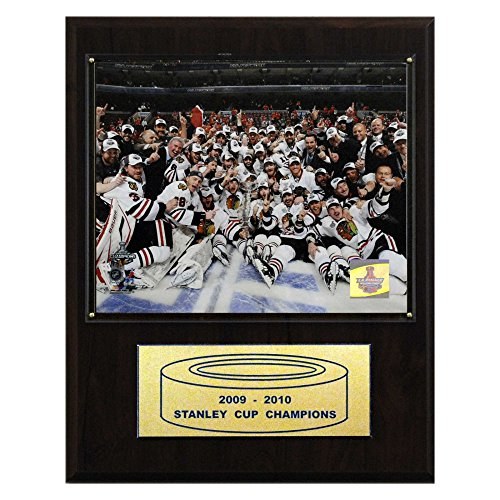 NHL Blackhawks 2009-10 Stanley Cup Celebration Champions Plaque