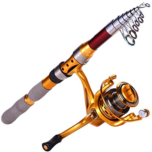 Spinning Fishing Rod Kit Carbon Telescopic Fishing Rod and Reel Combo (2.1m/6.88ft with Af2000)