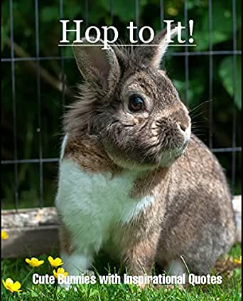 Amazon.com: Hop to It!: Cute Bunnies with Inspirational ...