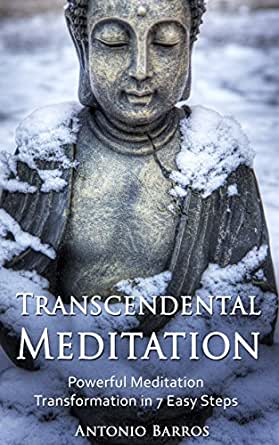 a personal account of meditating and trying to understand buddhism Tibetan buddhist meditation and the modern world tibetan buddhist meditation and the modern world explores the science of meditation: a personal account.