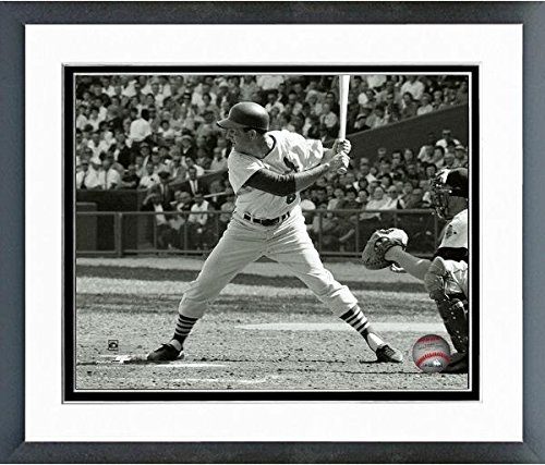 (Stan Musial St. Louis Cardinals MLB Action Photo 12.5