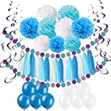 Pietypet Party Decorations, Paper Pom Poms Paper Tassel, Polka Dot Garland, Hanging Swirl Balloon Kit Baby Shower Wedding Birthday Celebration Table Wall Decoration - Blue