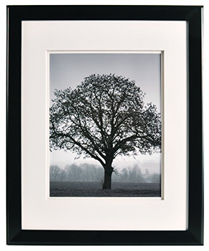 Artcare By Nielsen Bainbridge 16x20 Chelsea Black Museum Quality Archival Frame With Double White Mat For 1x14 Image #RW19CHLMB. Includes: UV Glazed Glass and Anti Aging - Frame Glass Uv