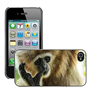 Super Stella Slim PC Hard Case Cover Skin Armor Shell Protection // M00149763 Gibbon Primate Ape Animal Mammal // Apple iPhone 4 4S 4G