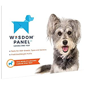 Wisdom Panel Dog DNA Test Kit – Canine Breed Identification and Ancestry Information