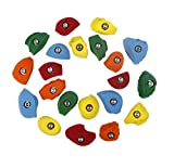Atomik Climbing Holds 21 Classic Pack Bolt Ons, Perfect for Home or Gym Rock Climbing Walls, Bright Tones
