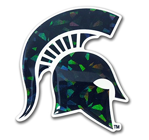 Michigan State Spartans Green NCAA Reflective 3D Decal Domed Auto Sticker - Michigan Auto State