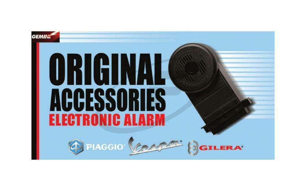Amazon.com: Piaggio Vespa GT GTL GTS GTV 125 250 300 Alarm ...