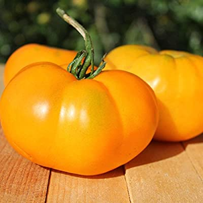 Tomato Garden Seeds - Brandywine Yellow - Non-GMO, Heirloom Vegetable Gardening Seed